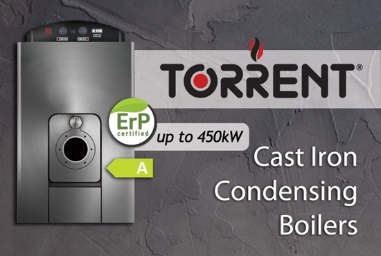 Picture of TORRENT: Cast Iron Boiler